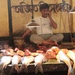 Kolkata Fish Market (10)